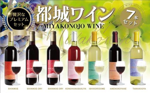 ML-2002_都城ワイナリーのワイン7本セット