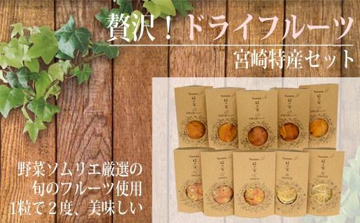 【贅沢100%ドライフルーツ】宮崎特産セット  30-3015