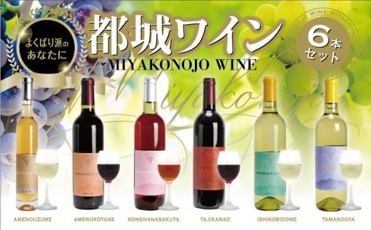 ML-2001_都城ワイナリーのワイン6銘柄セット