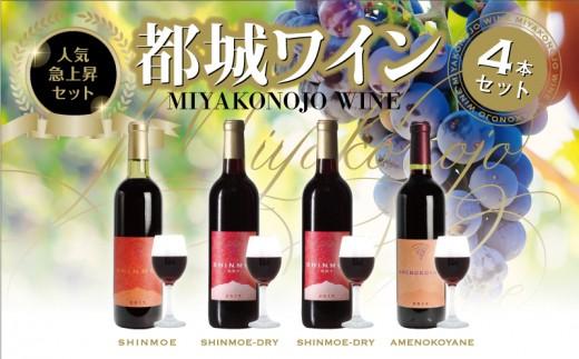 MK-2002_都城産赤ワイン4本セット