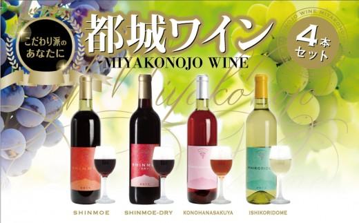 MK-2003_日本最南端ワイナリーの愛情ワイン4本セット
