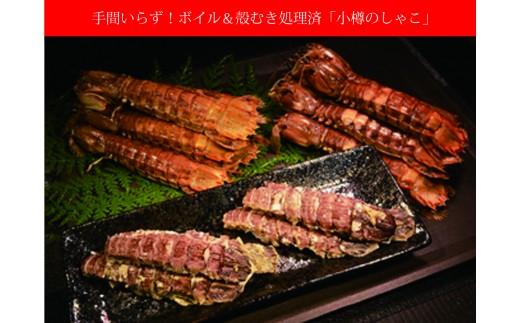 【B0117】小樽を味わう 獲れたてそのままボイル殻むき処理済!「小樽のしゃこ」B