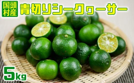 【国頭村産】青切りシークヮーサー(5㎏)