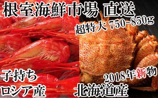 CB-60023 根室海鮮市場<直送>毛ガニ750~850g×1尾、北海しまえび500g