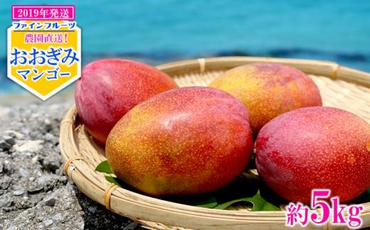 【2019年発送】農園直送!ファインフルーツおおぎみマンゴー【約5Kg】