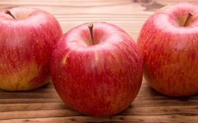 [№5724-0215]<2018年12月初旬頃よりお届け>ふじりんご 約7.5kg(24~30玉)【ご家庭用】