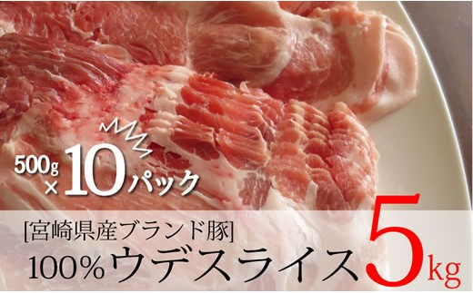 B-289 宮崎県産ブランド豚スライス500g×10(合計5kg)【5,000pt】