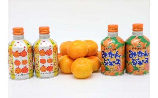 A-006 ふるさとの味みかんジュースセット【大分県産温州みかんジュース280g×10本・粒入りみかんジュース280g×10本】