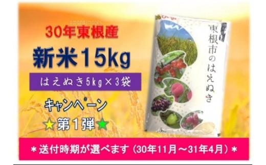 30年産[精米]はえぬき15kg(送付時期が選べます)植松商店提供