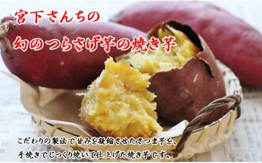 A1-2107/宮下さんちの【幻のつらさげ芋】の焼き芋
