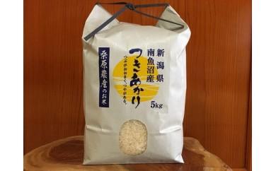 【新米H30年産】南魚沼産つきあかり桑原農産のお米 5㎏