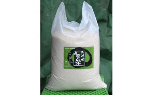 北海道恵庭産 たつや自慢の米 ななつぼし10kg【1039128】