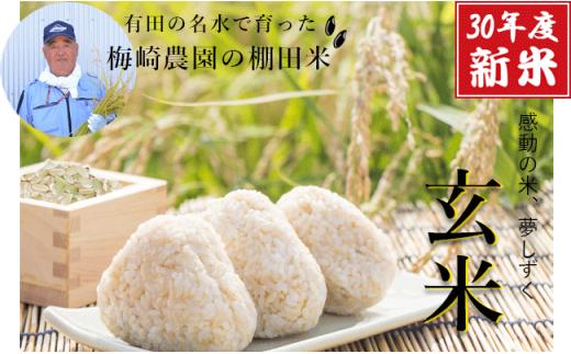 K10-3 有田産の棚田『玄米』10kg 夢しずく