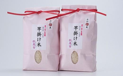 人吉産 にこまる(白米) 1.5kg×2袋