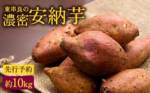 【A-412】東串良の濃密安納芋 約10kg(先行予約)
