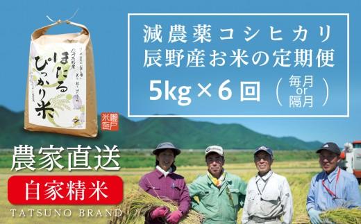 40-81 ほたるぴっかり米 定期便(5kg×6回 上旬発送)