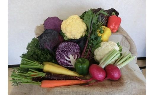 道の駅マイデルの彩り野菜とお米のセット
