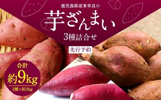 【A-415】鹿児島県産東串良の芋ざんまい 3種詰合せ(先行予約)