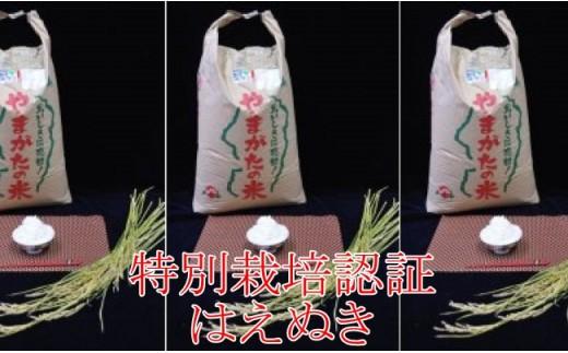 【限定100】平成30年産特別栽培米「はえぬき」玄米30kg(平成30年11月発送・JA)