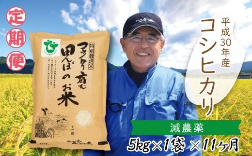 K-2 (11) 【H30新米】定期便 村上ファーム  特別栽培米コシヒカリ5㎏×11ヶ月