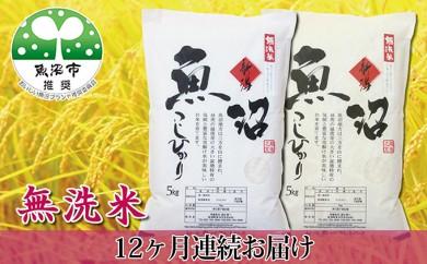 [№5762-0381]農家直送!魚沼産コシヒカリ無洗米120kg 毎月10kgを12ヶ月間お届け