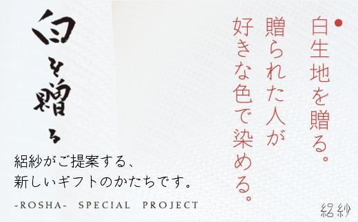 【U521】【絽紗】白を贈る-This is JAPAN ジオメトリック市松模様のグラデーションストール