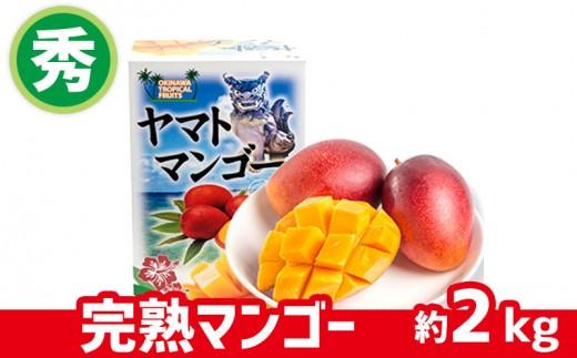 【2019年発送】ヤマト農園 完熟マンゴー(秀品)約2kg