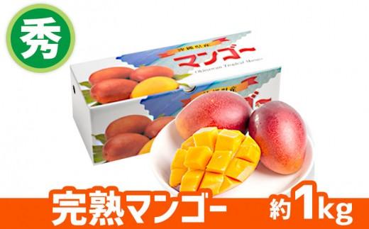 【2019年発送】ヤマト農園 完熟マンゴー(秀品)約1kg