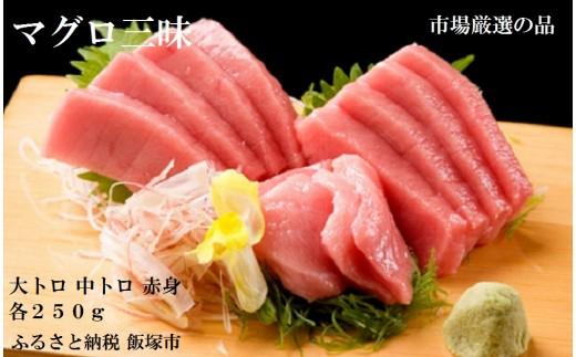 【B5-001】魚市場厳選 本マグロ三昧(3種各約250g)