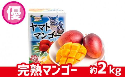 【2019年発送】ヤマト農園 完熟マンゴー(優品)約2kg