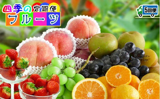 O-12〈定期便5回〉丸亀市場より直送!今が旬のフルーツ詰め合わせ《毎回秘密のオマケ付き》