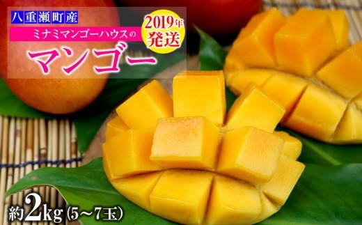 【2019年発送】ミナミマンゴーハウスのマンゴー約2kg(5~7玉)