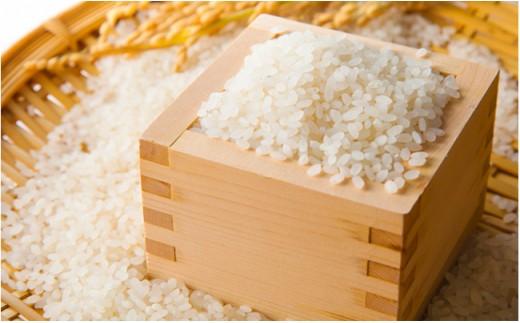 [№5845-1272]丹波市産コシヒカリ 特別栽培米「夢たんば」2kg×3