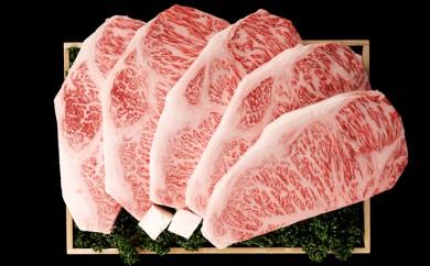 [№5905-0224]A5飛騨牛サーロインステーキ(約180g×5枚)