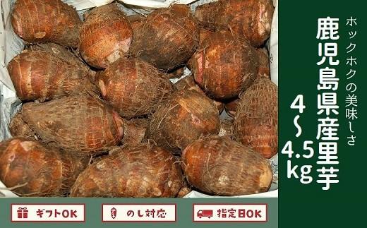 008-52 ホックホク!鹿児島県産里芋