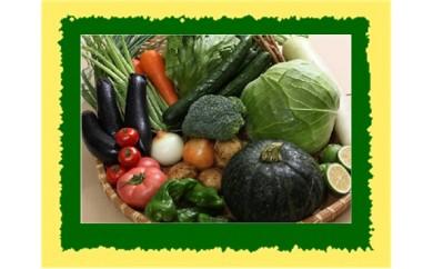 [№5632-0140]●旬野菜 年4回の 定期便♪ ●