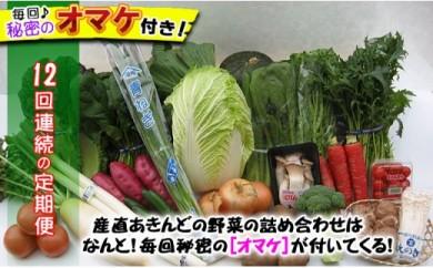 [№5803-0453]【頒布会12回】産直あきんど厳選お野菜と旬の果物の詰め合わせ