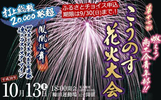 L-1 こうのす花火大会ペアチケット【平成30年10月13日(土)開催】