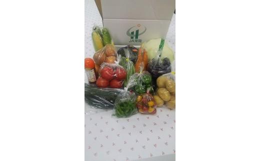季節の野菜セット1箱