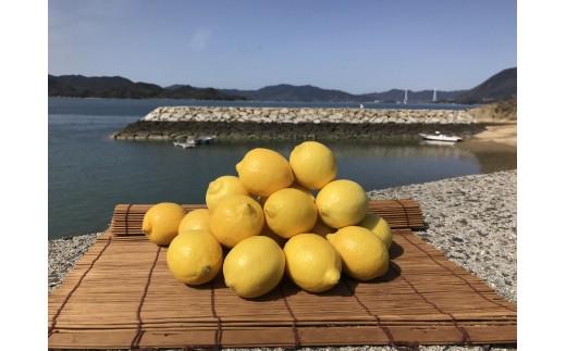 青いレモンの島®産レモン