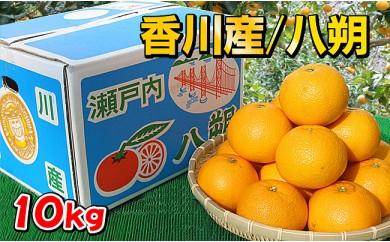 [№5803-0438]香川県産 果汁タップリ完熟の八朔 10kgの詰め合わせ