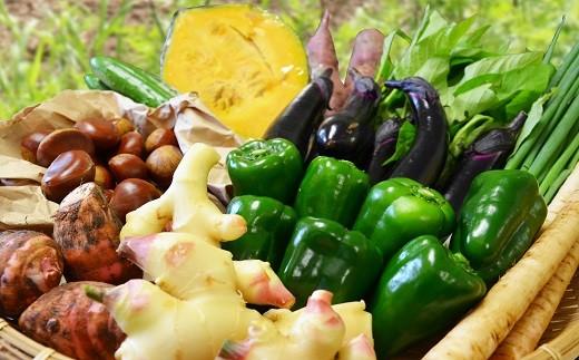 越知町産季節の野菜セット(年2回発送)