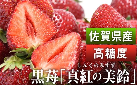 KN003 佐賀県産 黒いちご「真紅の美鈴」(希少品種な糖度が高い苺)