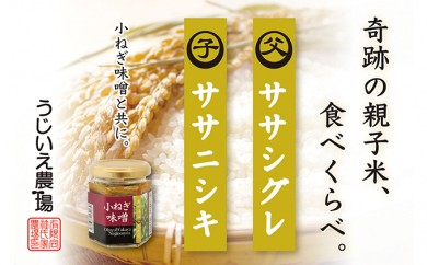 [№5706-0098]30年産「ササニシキ親子米」食べ比べ+「小ねぎ味噌」セット