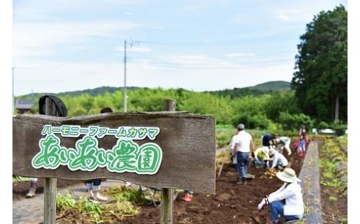 AZ-7 自然と触れ合う農村体験!あいあい農園オーナー利用券(1区画分)