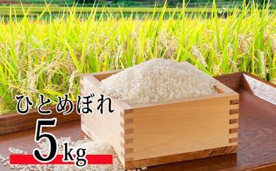[№5899-0166]平成30年産環境こだわり近江米ひとめぼれ5kg