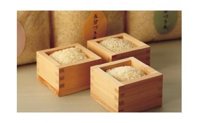 栄養価の高い「分づき米」の食べ比べ 七五三あきたこまち 玄米と白米の間の「分づき米」3種類セット(各2㎏)