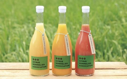 A01-502 柑橘ソムリエセレクト 季節のジュースセット