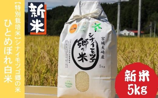 (03811)【平成30年産・特別栽培米】シナイモツゴ郷の米(大崎市鹿島台産)ひとめぼれ白米5kg