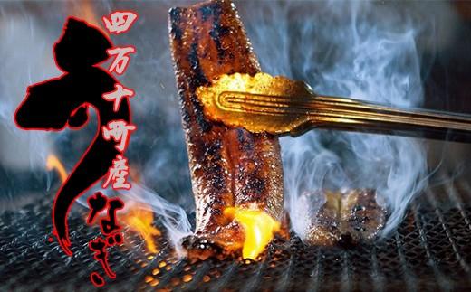【感謝祭】四万十地焼き蒲焼鰻2尾セット Esg-0301